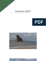 Tumaco 2017