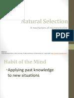 06_ PP Natural Selection