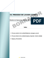 XV._Lavado