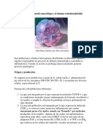 El Sistema Reticuloendotelial Monocitos y Macrofagos Adette-110918080142-Phpapp01