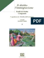 Il diritto dell'immigrazione II