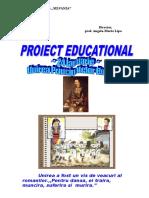 proiect - 24 ian.doc
