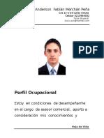 89675038-Hoja-de-Vida-Anderson.doc