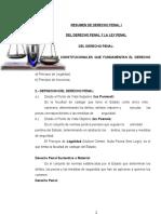 DERECHO PENAL Y PROCESAL PENAL.rtf