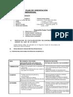 Plan de Orientación Individual Final