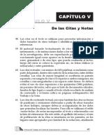 citas y notas.pdf