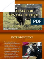 Presentación de Cornada de Toro Modificado