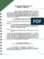 Proceso de Clasificación de Los Grupos Lineales