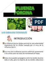 INFLUENZA PORCINA-1.pptx
