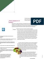 nevid Capitulo 2_fundamentos Biologicos Del Comportamiento.es
