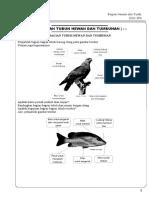 Modul Bimbel Kelas 2 KTSP 2001 IPA Bab 1 Bagian Tubuh Hewan Dan Tumbuhan