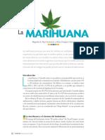 Marihuana.pdf