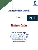 Aula14 Bioquímica SinalizaçãoMolecular