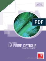 rapport-fibre-optique-final-dec2013-web.pdf