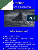 Emotion & Nervous System