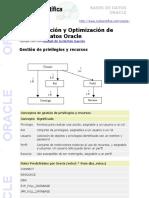 Administración y Optimización de Bases de Datos Oracle - Gestión de privilegios y recursos
