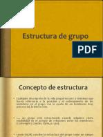 Clase 3 Estructura de Grupos