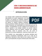 Observación y Reconocimiento de Hongos Ambientales Micro