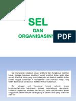 SEL dan Organisasinya.pptx