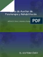 Cursodeauxiliardefisioterapiayrehabilitacin 130809144118 Phpapp01 (1)