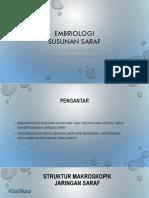 Embriologi saraf 2017