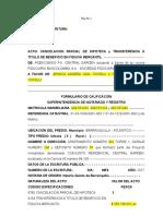 TRANSFERENCIA CENTRAL GARDEN ACTUALIZADO.doc