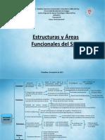 Estructuras y Áreas Funcionales del SN.pdf