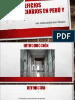 041016 BENEFICIOS PENITENCIARIOS EN PERÚ Y ESPAÑA - Dra. Diana Gisella Milla Vásquez.ppt