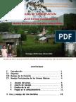 Manual de Capacitacion Postcosecha Giz Feb 2013