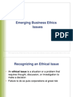 Business Ethics Issues