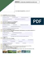 284042653-Refuerzo-tema-1-CCNN-6º-ANAYA.docx