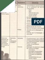 CTM Palella y Martins INVESTIGACION
