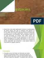 clasificacion-vertisoles.pptx