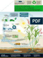 El Ciclo de Energia Renovable Del Carbono