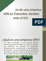 Constitución de Una Empresa APA en Colombia Anexos