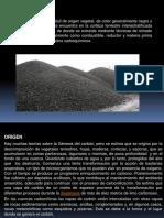 Carbon Petrografia