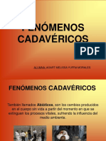 Fenomenos Cadavericos Exam1 1216671941862537 9