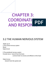 Chapter 3-Coordination and Response