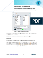 Customization_of_AttributeFormat.pdf