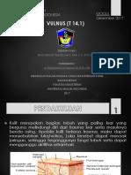 Ppt - Modul Vulnus