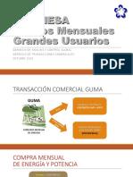 Presentacion Guma Agueera Precios Mensuales 2015
