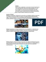 DEFINICIÓN DE BIOLOGÍA GENERAL San Agustin.docx