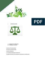 Resumen Constitucionalización Derecho Ambiental
