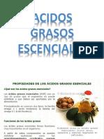acidos grasos escenciales
