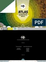 ATLAS FINAL.pdf