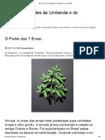 Ervas _ Orixás e entidades da Umbanda e do Candomblé.pdf
