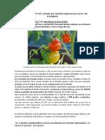 cultivos agua de mar.docx