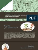 Presetacion Proyecto Educacion Financiera