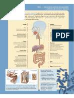 CienciaVida9 CadAT PDF Bx
