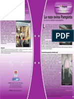 Ficha 11 La Raza Ovina Pampinta